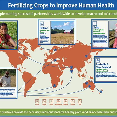 Countries Practicing Successful Fertilizer Use