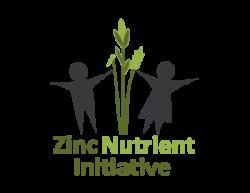 ZNI Logo