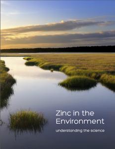 Zinc Environment Cover