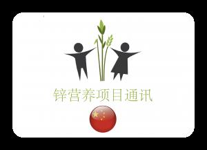 ZNI China Button